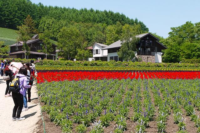 Hokkaido_day6_21