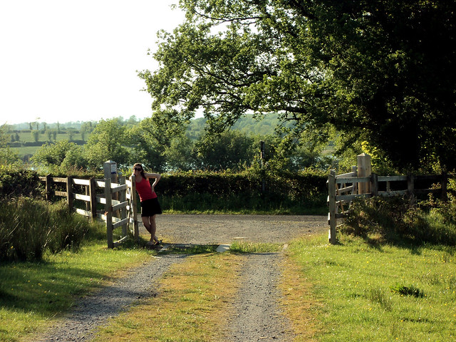 Gate along the Irish countryside.