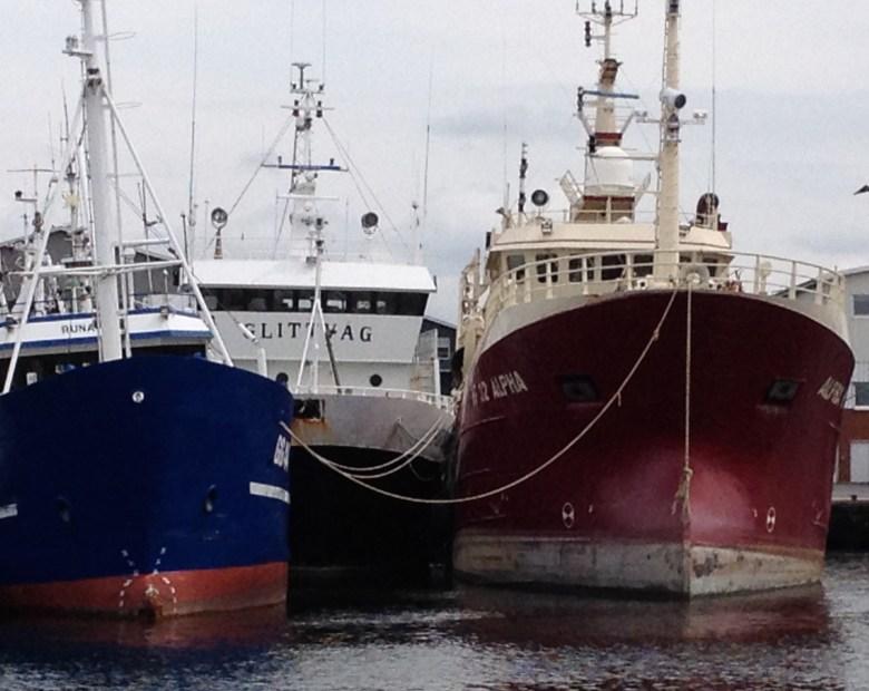 fiskeback12juli_2015-3 - 14