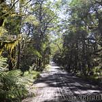 05 Viajefilos en Australia. New England NP 06