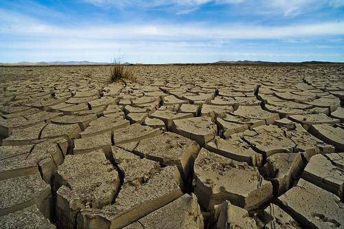 Mongolia climate change and adaptation