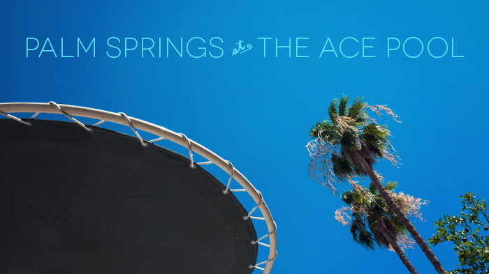 Palm Trees at Ace Hotel & Swim Club Palm Springs