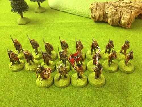 Perry Miniatures plastic ACW Confederate  infantry