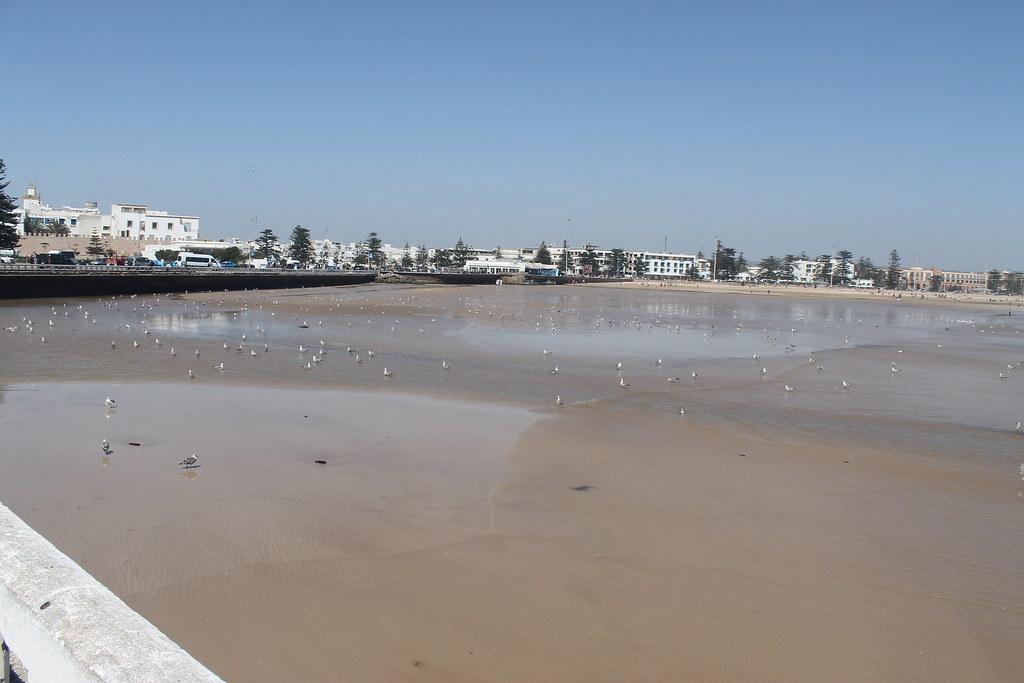 Playa de Essaouira