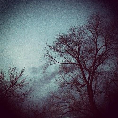 Cottonwoods by @MySoDotCom