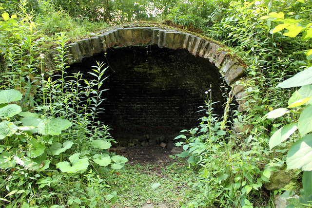 20150723_Blackwater_Rail_Trail_015