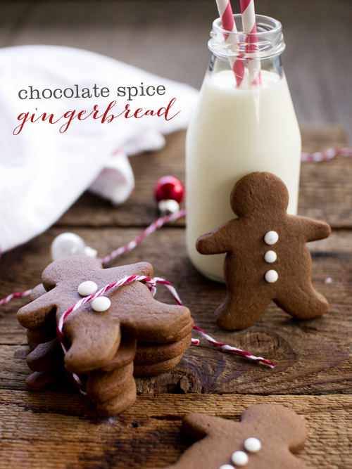 chocolate spice gingerbread