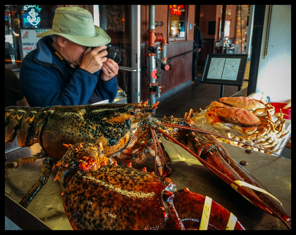 Lobster Eye - Crab Shooter - San Francisco - 2014