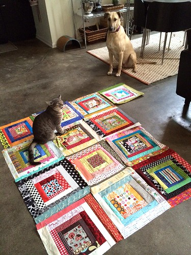 Pets with Scrapbusting Blocks