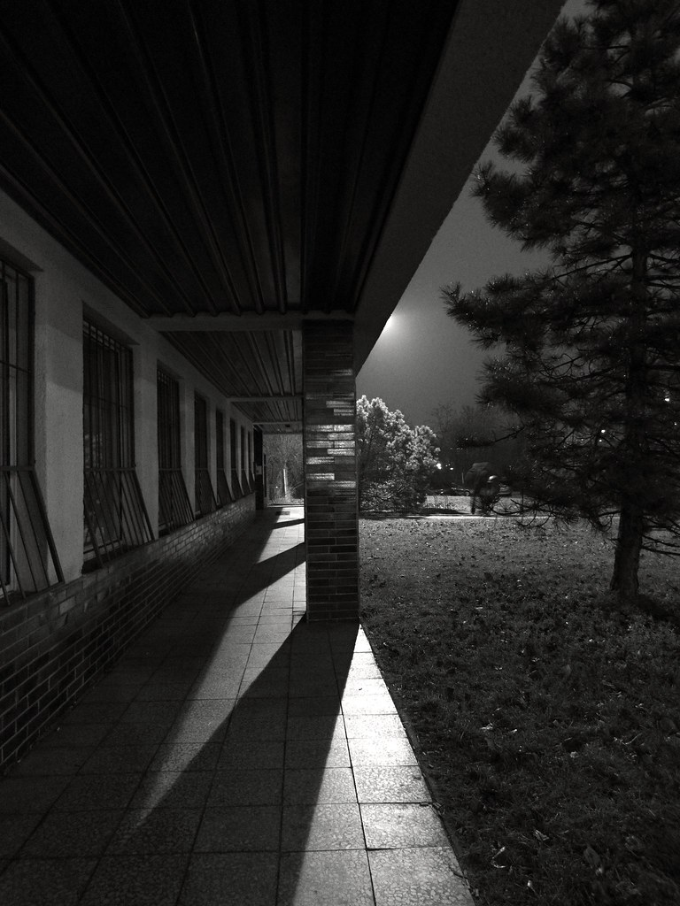 Just an Ordinary Building and Some City Nature (B&W)