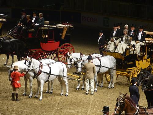 Royal Winter fair 2013 toronto
