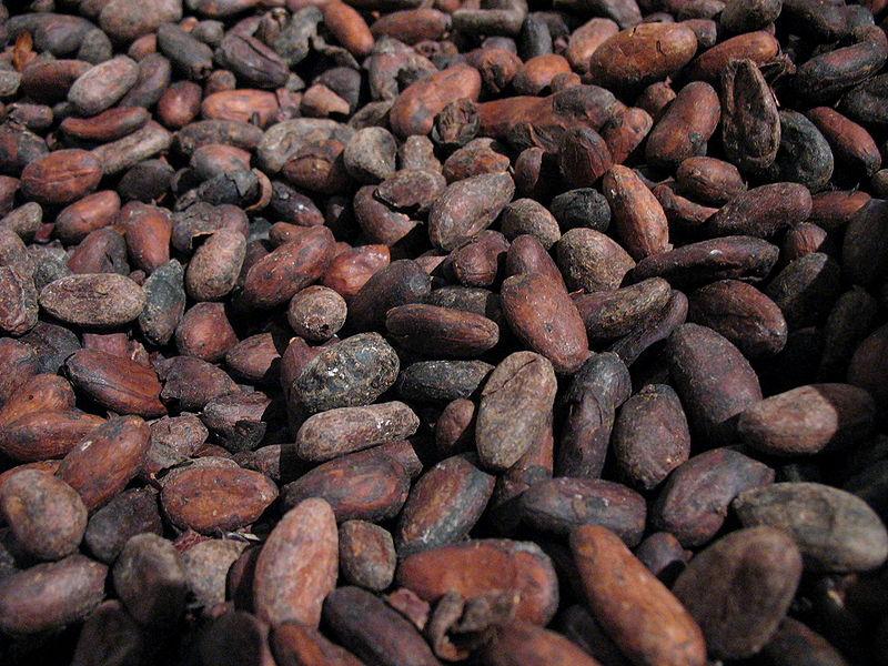 2. Granos de cacao. La moneda de los aztecas. Autor, SuperManu