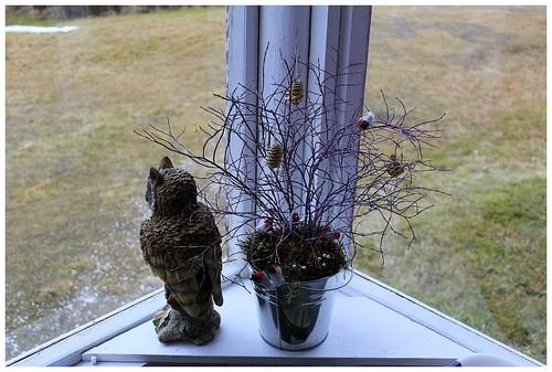 Asetelma nro 3: Niin ikään äitini käsiäalaa. Pöllö tarkastaa jokaisen taloon tulijan.