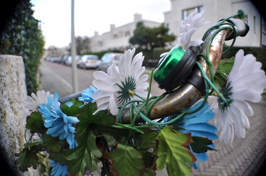 Fleurs Pastiques et Guidon 1