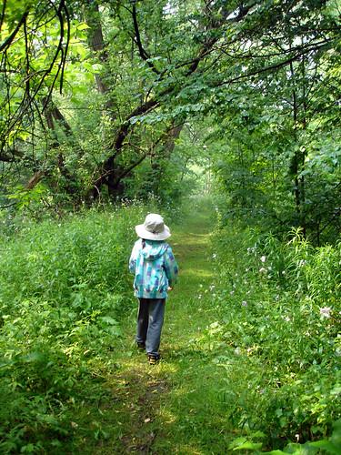 hiking trail, darlington provincial park