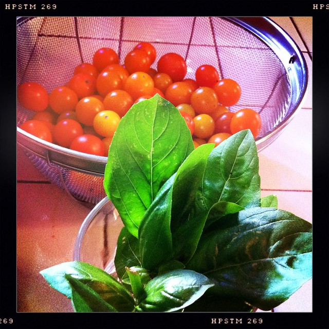 Balsamic Tomato Basil Jam