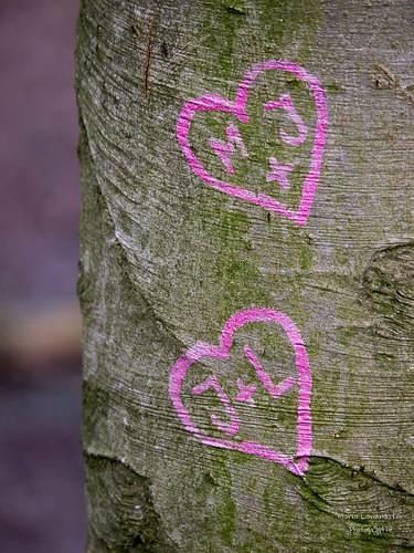 Zwei Herzen in pink ...