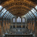 Natural History Museum HDR