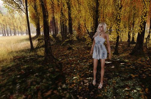 Dainty Daisys 2 by Lexia Barzane (www.lexiabarzane.com)