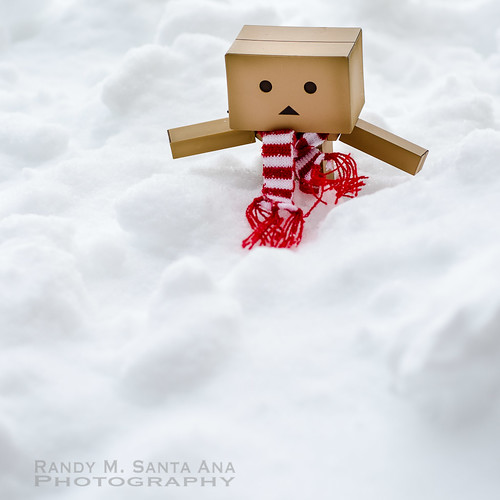 Danbo In Snow.