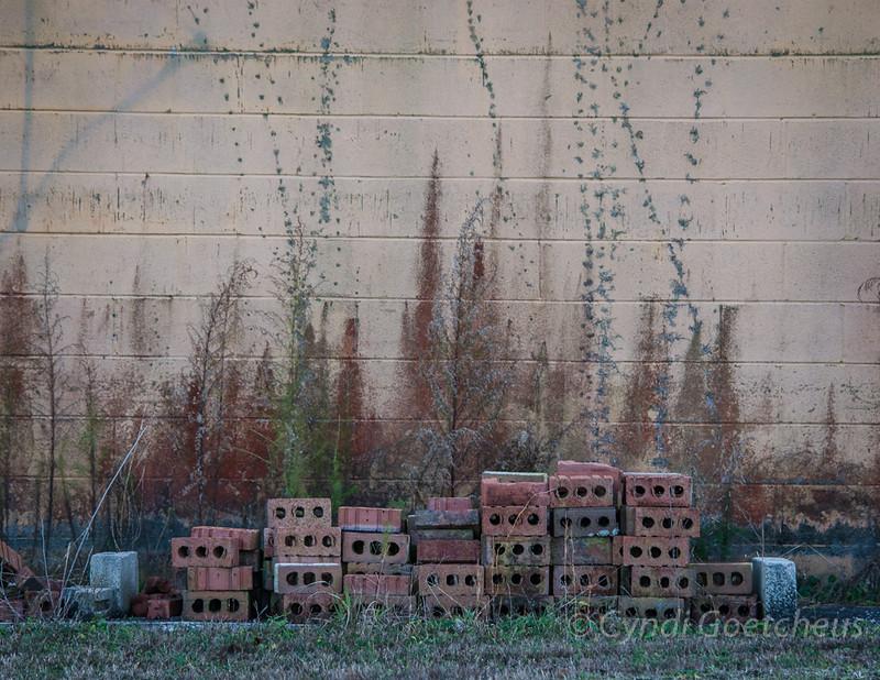 Robersonville bricks