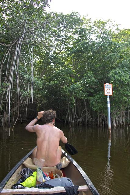 naturist 0007 Everglades, Florida, USA