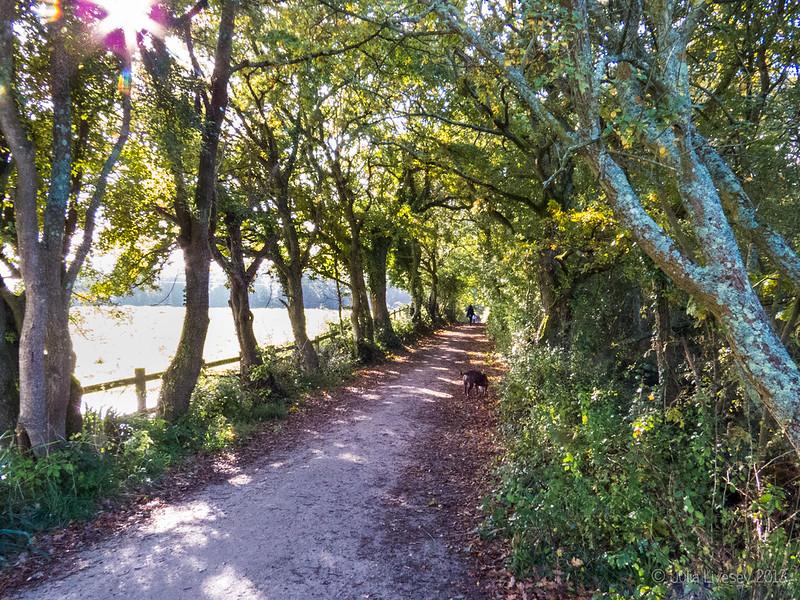Jez wanders up the path