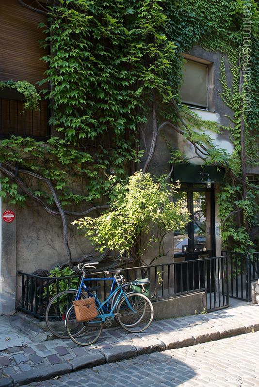 antimuseum.com-montsouris-0428