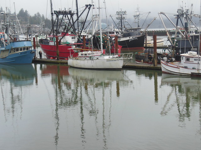 Harbor at Newport, Oregon