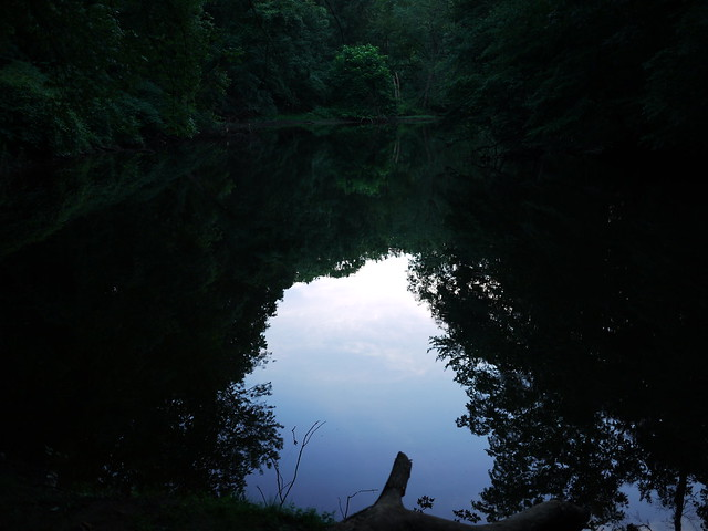 evening reflections in the passaic river
