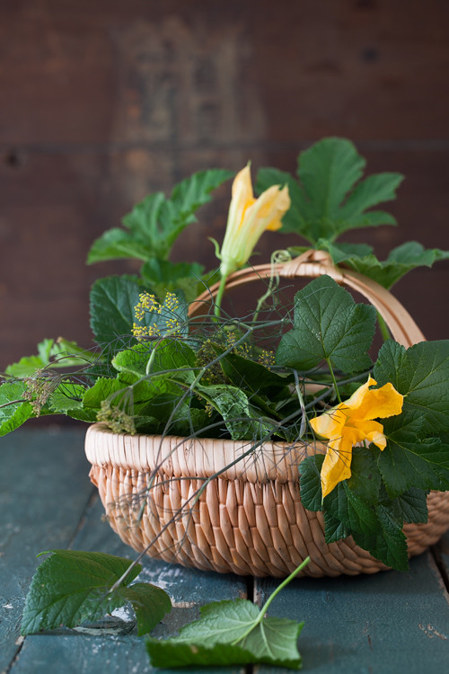 Herbs for Pickling 1