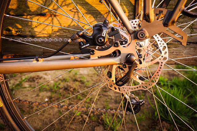 Rear brake detail