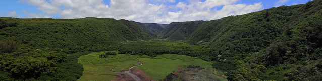 Pololu Valley Wetlands