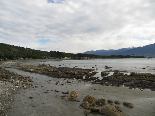 kaikoura, from our hostel