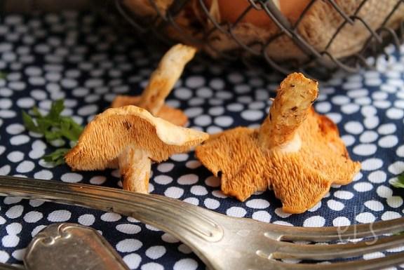 Œufs cocotte aux champignons des bois