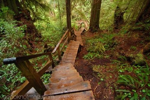 Beautiful Vancouver Island
