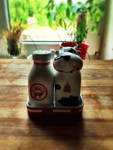 Moo :-) by SpatzMe
