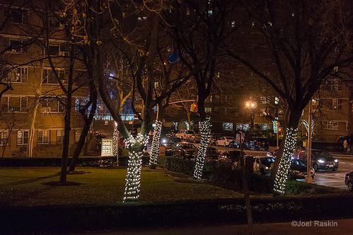 Co-op Village Winter Lights by Joel Raskin