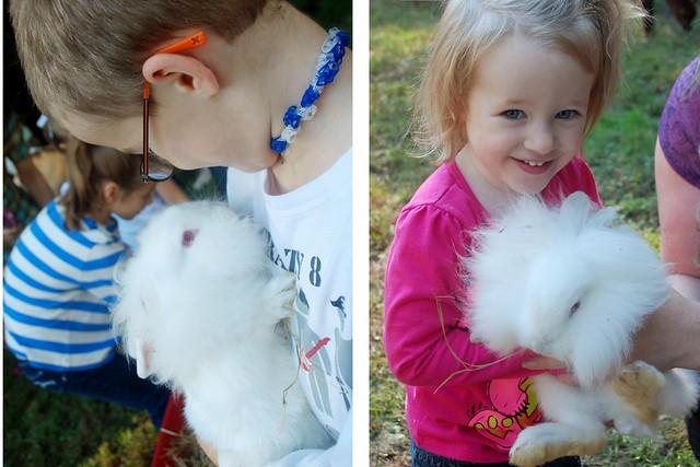 michael clare bunny (1280x853)