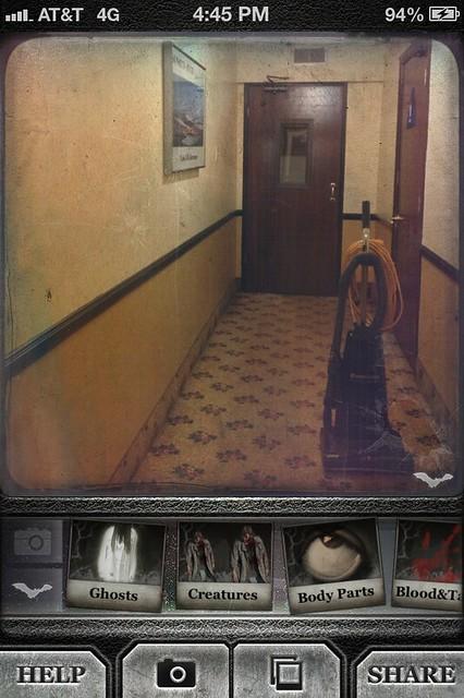 Camera Roll-4197