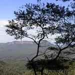 Viajefilos en Australia. Blue Mountains 014