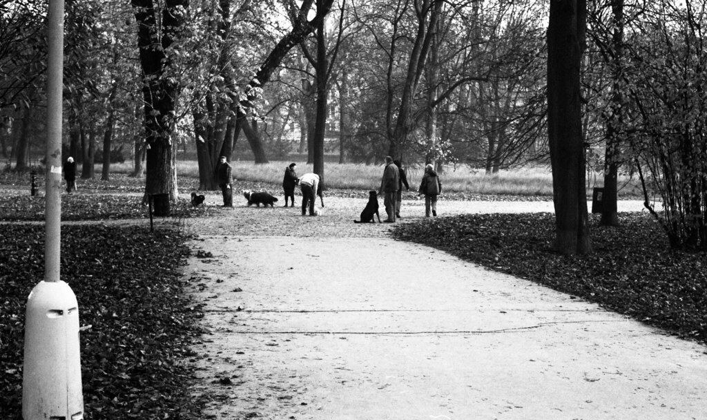 Kiev 4 + Helios 103 - People Walking Dogs in the Park