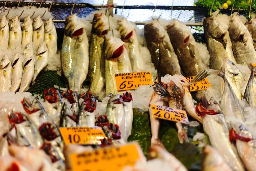 Fish display at vendor in Kadikoy, Turkey.