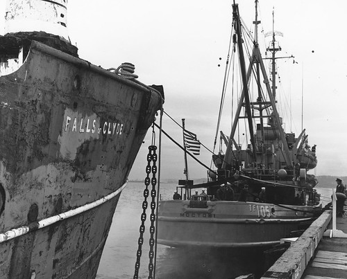 FOC, MAKING UP TOW WITH MOCTOBI, PIER 90 SEATTLE, 1963