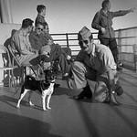 Found Film: Incheon, Korea, 1946, roll 4