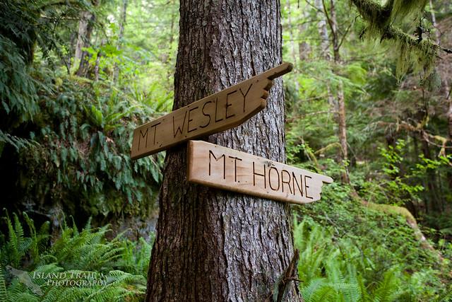 Mt Horne - 2014-06-07-6162