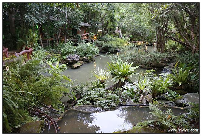 森林,泰國,羅勇,美食 @VIVIYU小世界