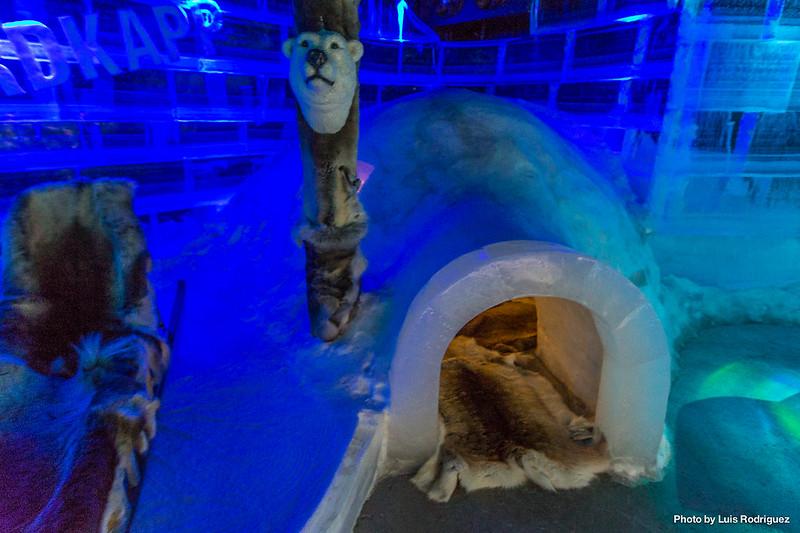 Artico Ice Bar-8