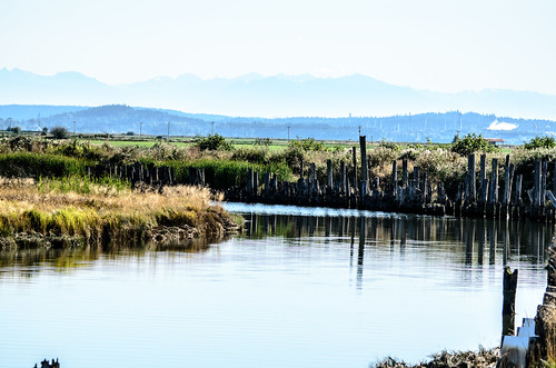 Skagit Valley and Samish Island-10