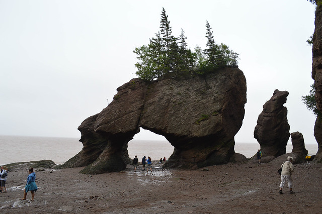 Walking the Hopewell Rocks